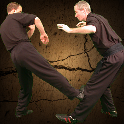 beginners wing chun classes Rayleigh Essex are the perfect place to start your Martial Art journey.