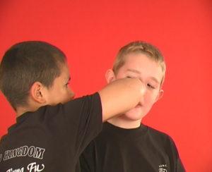 Kids Wing Chun Wolverhampton and Halesowen